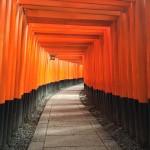 2015年日本觀光產業消費金額結果報告