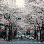 新冠肺炎對日本中古屋交易市場的影響